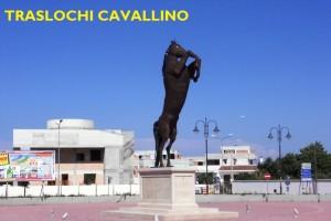 TRASLOCHI CAVALLINO